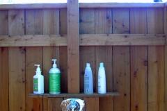 moore-shower